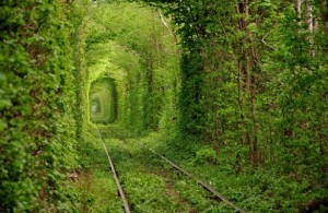 Tunnle of Love Old Train tunnel Ukraine